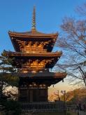 Japan19_set_10_11