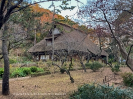 Japan19_set_10_15