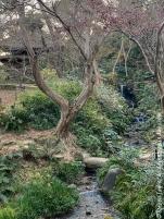 Japan19_set_10_16