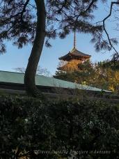 Japan19_set_10_2
