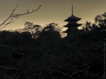 Japan19_set_10_23