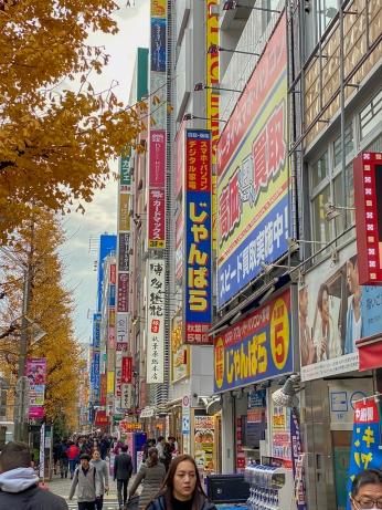 Japan19_set_5_11