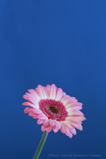 Color_0213